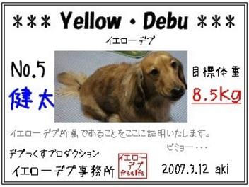 Debu5_4